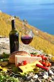 Wino i chese Fotografia Stock