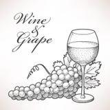 Wino i winogrono royalty ilustracja