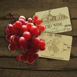 Wino i winorośl ilustracja wektor