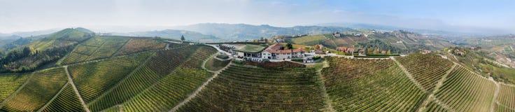 Wino krajobraz Fotografia Royalty Free