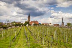 Wino kraju krajobraz w Edenkoben okręgu Południowy wina Ro Fotografia Royalty Free