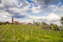Wino kraju krajobraz w Edenkoben okręgu Południowy wina Ro Zdjęcie Stock