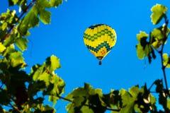 Wino kraju latanie balonem obrazy royalty free