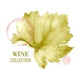 Wino lista Zdjęcie Stock