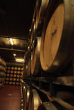 Wino loch w Hiszpania Zdjęcia Royalty Free