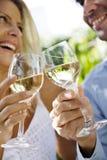 wino ogrodu Zdjęcia Stock