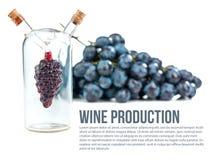 Wino produkcja Obrazy Stock