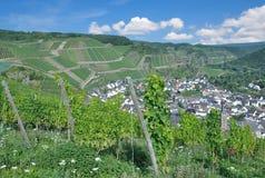 Wino wioska Dernau, Ahr dolina, Palatinate, Niemcy Fotografia Royalty Free
