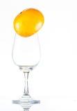 Wino z pomarańczami Obraz Stock