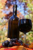 Wino z winogronami Obrazy Royalty Free