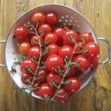 Winogradów pomidory Zdjęcia Royalty Free
