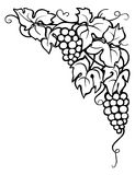 Winograd i liście, kąt Obraz Royalty Free