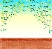 Winograd opuszcza pełzacza nad niebem z ceglany wal royalty ilustracja