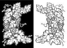 winogradu czarny narożnikowy biel Fotografia Royalty Free