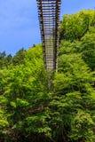 Winogradu most w Okuiya Zdjęcie Stock