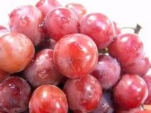 winogron czerwonych Zdjęcia Stock
