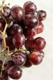 winogron czerwonych Zdjęcie Stock