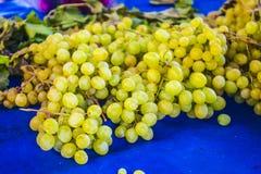 Winogron grona, winogrono adra Fotografia Royalty Free