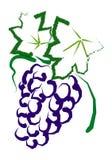 winogrona ilustracji