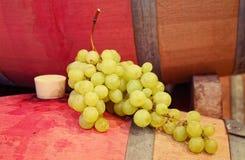 Winogrona Zdjęcia Royalty Free