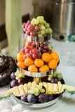 Winogrona, ananas, tangerines, pomarańcze, owoc ustawiać Zdjęcia Stock