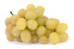 winogrona biały obrazy stock