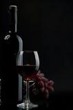winogrona czerwone wino Obraz Stock