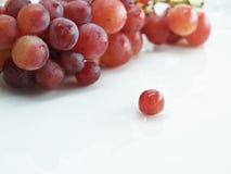 winogrona czerwoni Obraz Royalty Free