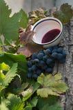 Winogrona i gronowy sok Zdjęcie Stock