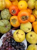 Winogrona i jesieni owoc w stole Obraz Stock
