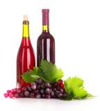 winogrona ja wine Obrazy Royalty Free