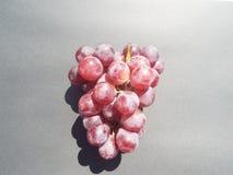 Winogrona na czarnym tle obrazy royalty free