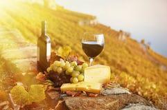 winogrona serowy czerwone wino Obraz Stock