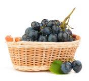 Winogrona w koszu Obrazy Royalty Free