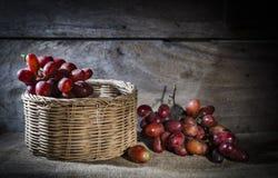 Winogrona w koszu na outside i. Zdjęcie Royalty Free