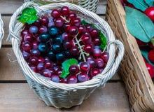Winogrona w łozinowym koszu Obraz Royalty Free