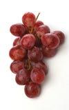 winogrona wiązek Obrazy Royalty Free