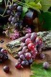 Winogrona z liśćmi Obraz Royalty Free