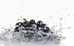 Winogrona z wodnym pluśnięciem Fotografia Royalty Free