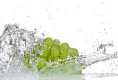Winogrona z wodnym pluśnięciem Zdjęcia Stock