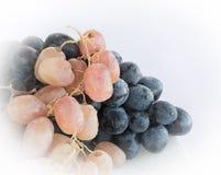 Winogrona z wodnymi kroplami Obraz Stock