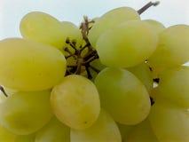 Winogrona zieleniej? zbli?enie obraz stock