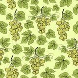 Winogrono, Bezszwowy tło Obraz Stock