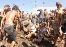 Winogrono bitwa 015 Zdjęcia Stock