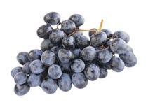 Winogrono gałąź Zdjęcia Royalty Free