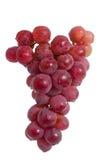 Winogrono odizolowywający na biały tle Obrazy Stock