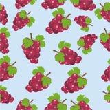 Winogrono owoc, seamlees wzór nowożytny projekt - wektor ilustracja wektor