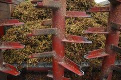 Winogrono podkrada się furgon z osadami miażdżący winogrona Fotografia Stock