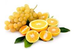 winogrono pomarańcze Obrazy Stock