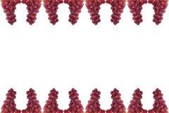 Winogrono rama odizolowywająca na białym tle Zdjęcie Royalty Free